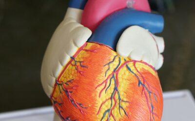 La mitad de la población está por encima de los límites deseables de colesterol